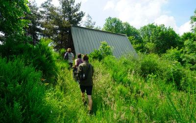 L'Herbier du Forez, une ferme agroforestière en permaculture